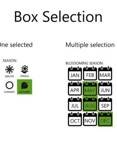 boxselection